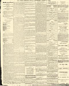 Trenton Times, August 24, 1883, Page 2