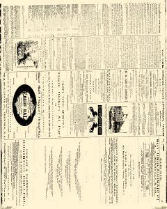 Trenton Times, August 24, 1883, Page 3