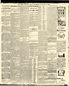 Trenton Times, February 14, 1890, Page 3