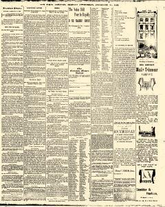 Trenton Times, February 17, 1890, Page 3