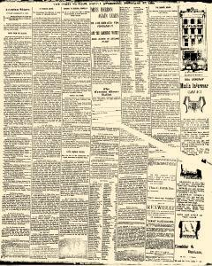 Trenton Times, February 21, 1890, Page 3