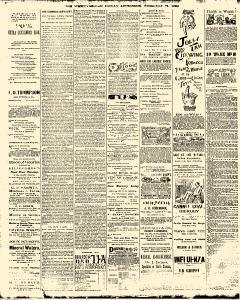 Trenton Times, February 21, 1890, Page 4