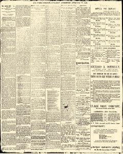 Trenton Times, February 22, 1890, Page 2