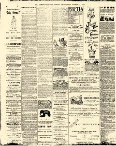 Trenton Times, March 07, 1890, Page 4