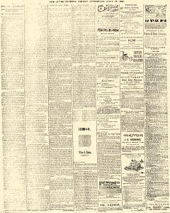 Trenton Times, July 25, 1890, Page 4