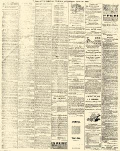 Trenton Times, July 29, 1890, Page 4