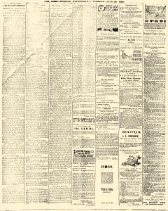 Trenton Times, July 30, 1890, Page 4