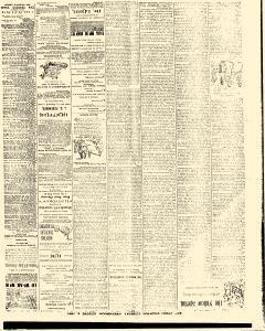 Trenton Times, August 05, 1890, Page 4