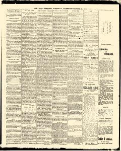 Trenton Times, August 21, 1890, Page 3