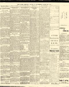 Trenton Times, August 28, 1890, Page 2