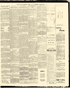 Trenton Times, August 29, 1890, Page 3