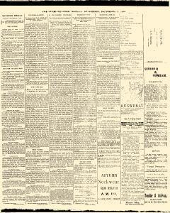 Trenton Times, September 01, 1890, Page 3