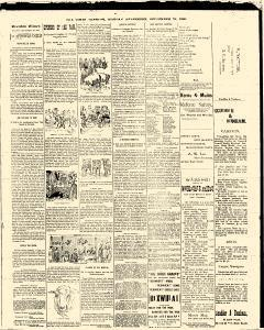 Trenton Times, September 29, 1890, Page 3
