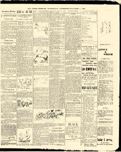 Trenton Times, October 01, 1890, Page 3