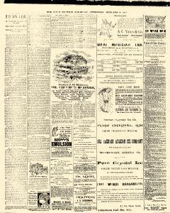 Trenton Times, October 02, 1890, Page 4