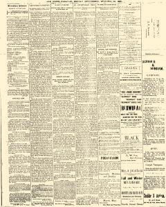 Trenton Times, October 10, 1890, Page 3