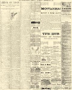 Trenton Times, October 20, 1890, Page 4