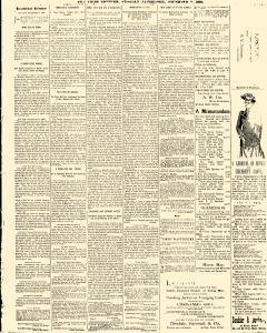 Trenton Times, December 02, 1890, Page 3