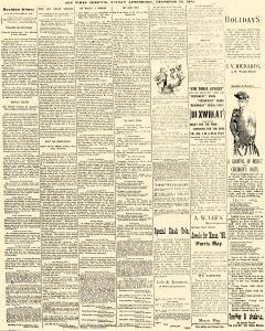 Trenton Times, December 26, 1890, Page 3