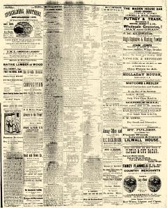 Albuquerque Journal, October 14, 1882, Page 3