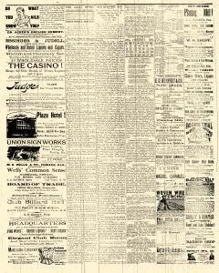 Las Vegas Daily Optic, February 14, 1891, Page 3