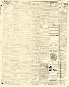 Albuquerque Daily Journal, January 31, 1882, Page 4