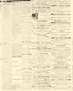 Albuquerque Daily Journal, February 02, 1882, Page 2