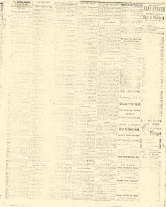 Albuquerque Daily Journal, February 02, 1882, Page 4