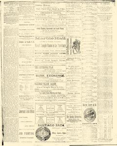 Albuquerque Daily Journal, February 10, 1882, Page 2