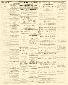 Albuquerque Daily Journal, May 10, 1882, Page 3