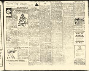 Allegany County Reporter, August 08, 1905, Page 3