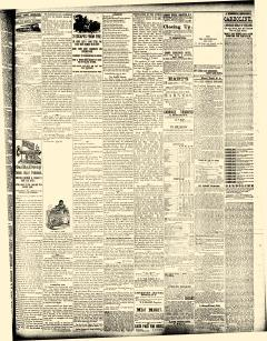 Angelica Allegani County Republican, January 07, 1880, Page 3