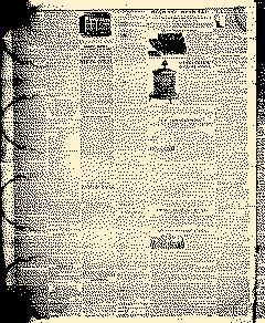 Angelica Reporter, February 26, 1850, Page 4