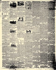 Angelica Reporter, August 29, 1854, Page 3
