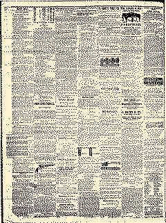 Angelica Reporter, January 17, 1866, Page 4