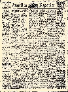 Angelica Reporter, January 17, 1866, Page 1