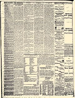 Angelica Reporter, February 28, 1866, Page 2