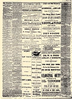 Angelica Reporter, February 28, 1866, Page 3