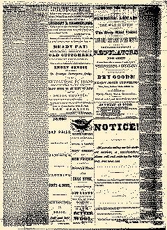 Angelica Reporter, March 07, 1866, Page 3