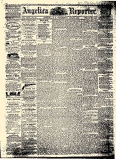Angelica Reporter, June 20, 1866, Page 1