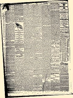 Angelica Reporter, September 26, 1866, Page 2