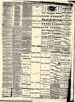 Angelica Reporter, September 26, 1866, Page 3