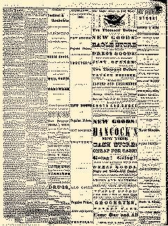 Angelica Reporter, October 03, 1866, Page 3