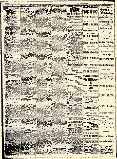Angelica Reporter, December 12, 1866, Page 2
