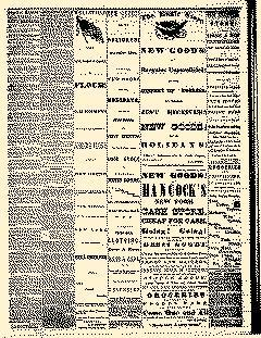 Angelica Reporter, December 12, 1866, Page 3