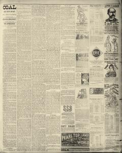 Dunkirk Evening Observer, January 06, 1890, Page 3