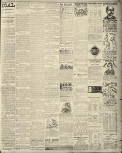 Dunkirk Evening Observer, January 07, 1890, Page 6