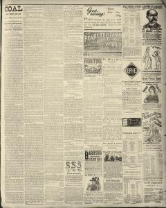Dunkirk Evening Observer, January 08, 1890, Page 3
