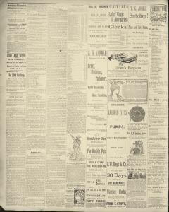 Dunkirk Evening Observer, January 17, 1890, Page 2