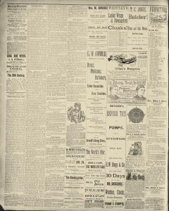 Dunkirk Evening Observer, January 18, 1890, Page 2